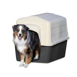 Petmate – Casa de 22 a 41 kilos