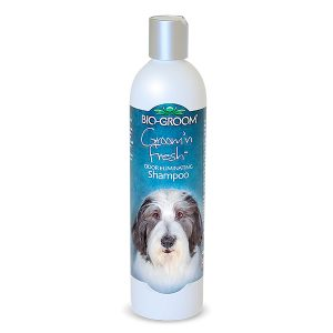 SHAMPOO BIO-GROOM GROOM N FRESH FRAGANCIA 12OZ