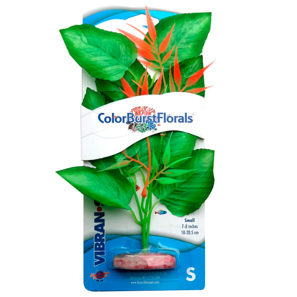 PLANT MARSHWOOD GN SMALL - 1