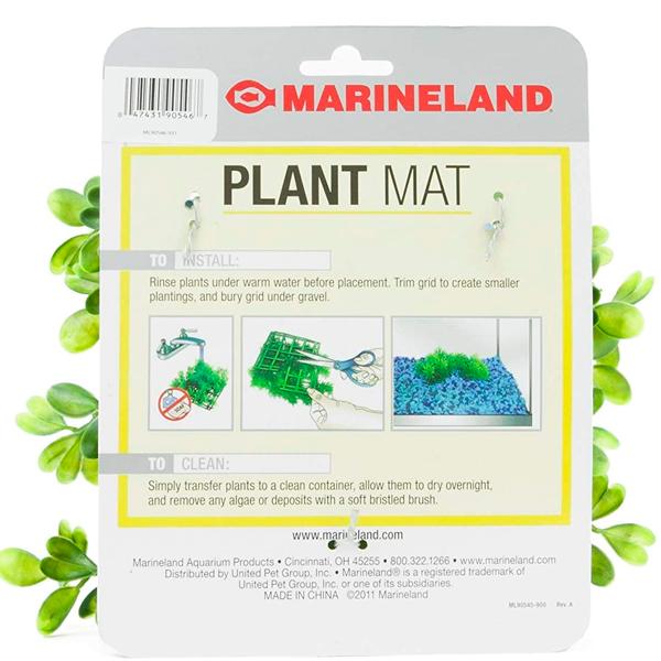 PLANT MAT SPRINGIRI & BOXWOOD - 2