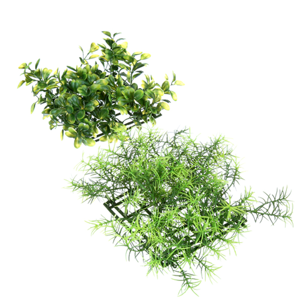 PLANT MAT SPRINGIRI & BOXWOOD - 3