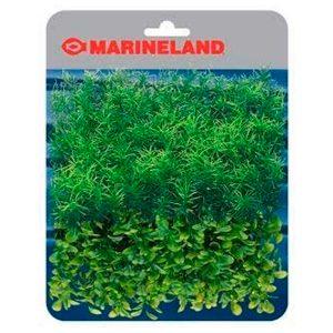 PLANT MAT SPRINGIRI & BOXWOOD PLANT MATS – MARINELAND
