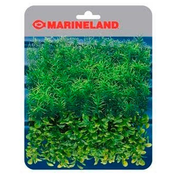 PLANT MAT SPRINGIRI & BOXWOOD PLANT MATS